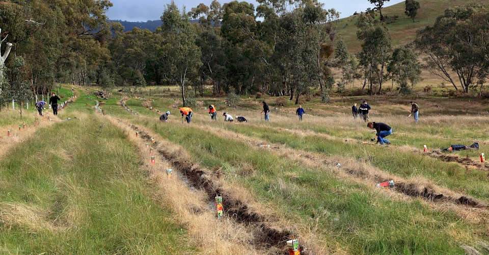 Landcare turns 30